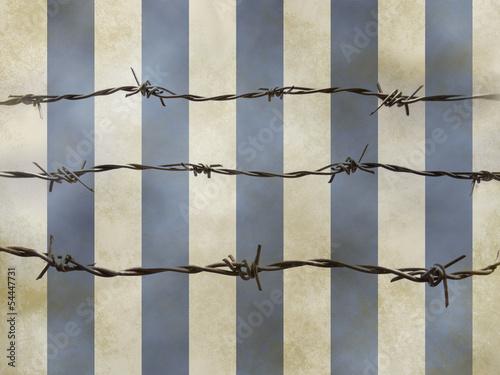 Valokuva  barbed wire