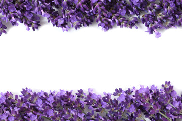 Frame with lavender