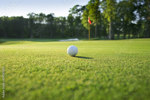 Acrylic Prints Golf Close up of golf ball on green