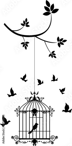 Recess Fitting Birds in cages beauty tree silhouette with birds flying and bird in a cage