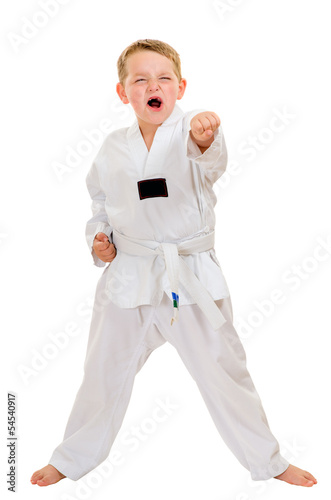 Child practicing his taekwondo moves isolated on white Poster