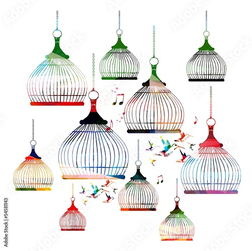 Acrylic Prints Birds in cages Colorful vector bird cages pattern with hummingbirds