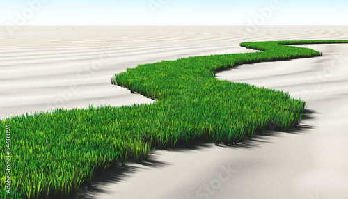 grassy path on the sand #54603196