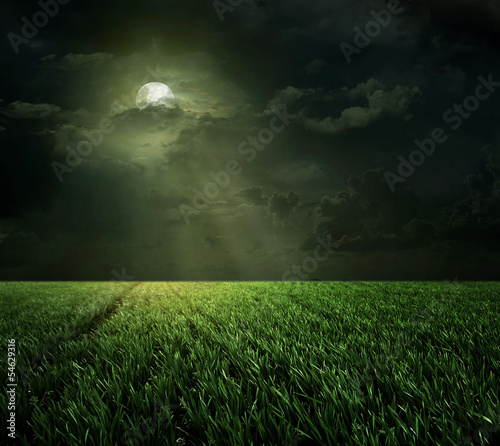 Poster Pleine lune the moon in the meadow