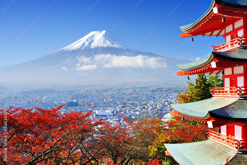 Fototapeta Mt. Fuji in Autumn with Chureito Pagoda