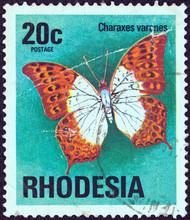 Charaxes Varanes Butterfly (Rhodesia 1974)
