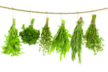 Set Of Spice Herbs / Hanging And Drying /  Isolated On White Bac