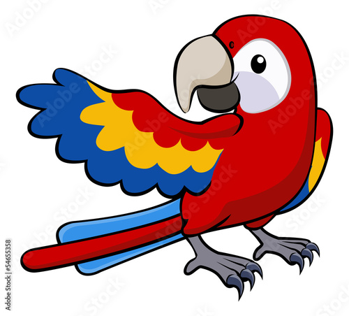 Red parrot illustration Wallpaper Mural