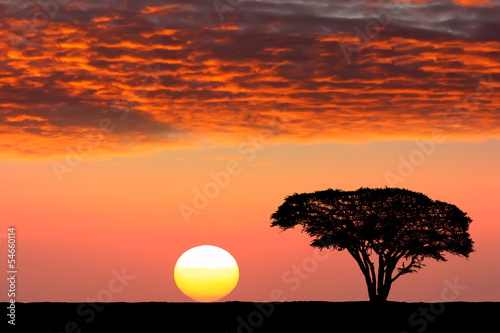 Deurstickers Afrika Sunset in Africa