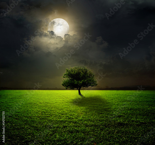Poster Pleine lune Night and the moon