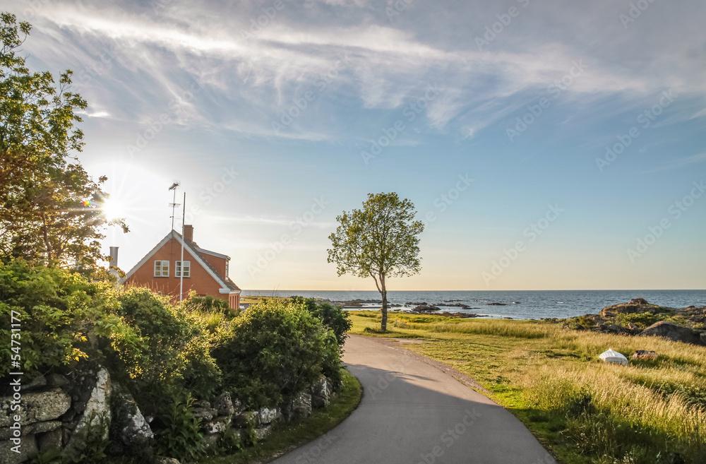 Fototapety, obrazy: Küstenstrasse auf Bornholm