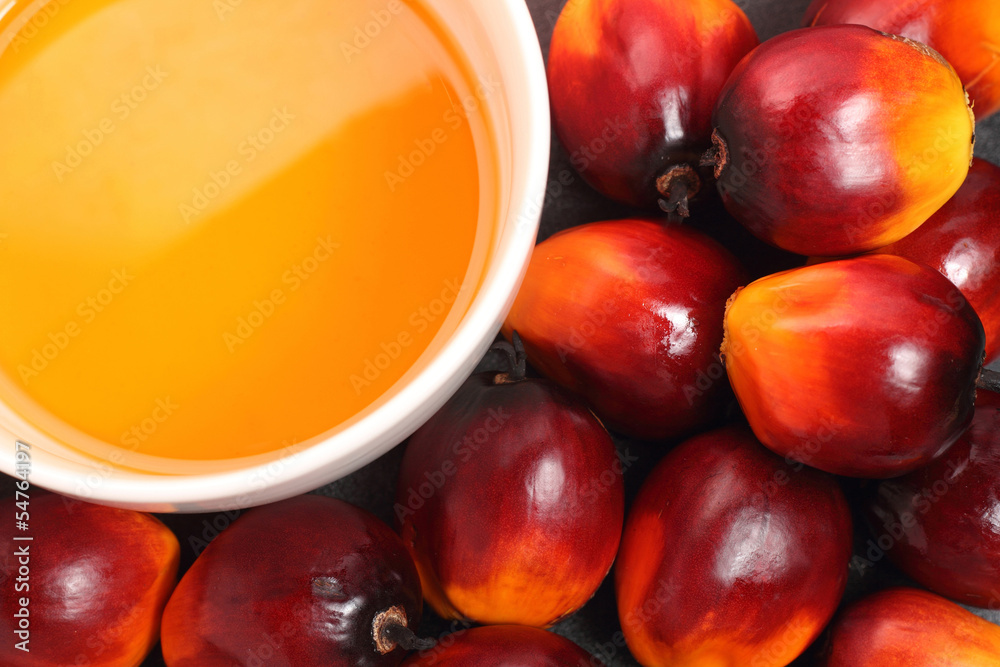 Fototapety, obrazy: Oil palm fruit and cooking oil