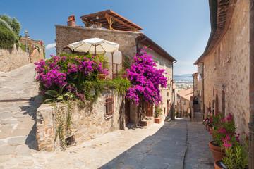 Fototapeta na wymiar Castiglione della Pescaia, Liguria, Italy