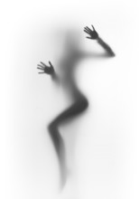 Beautiful And Sexy Dancer Woman Silhouette