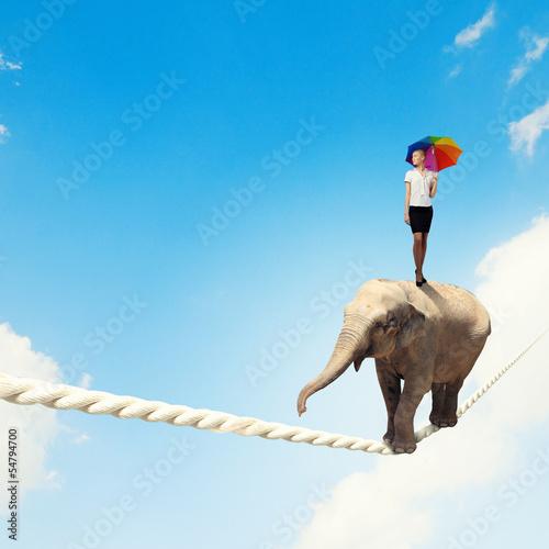 Photo  Elephant walking on rope