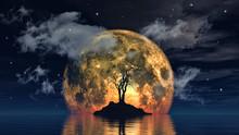 Moon And Spooky Tree
