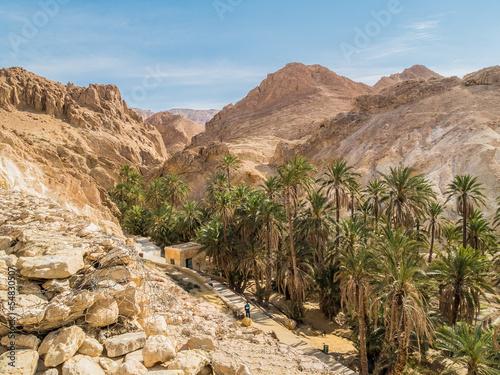Deurstickers Tunesië mountain oasis Chebika in Sahara desert, Tunisia