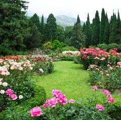 Panel Szklany Podświetlane Ogrody Rose Garden