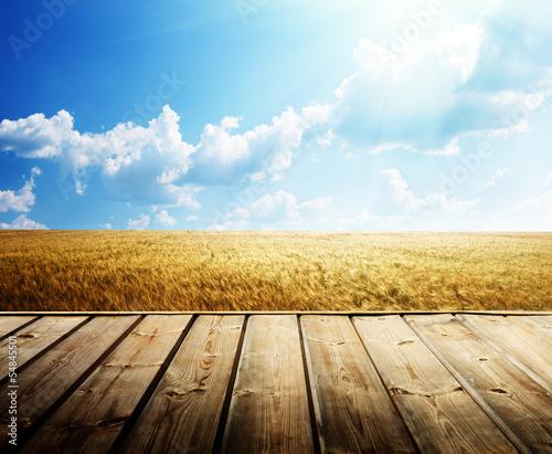 Printed kitchen splashbacks Beige wooden floor and summer wheat field