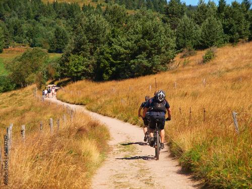 Foto op Canvas Jacht A vélo sur les chemins