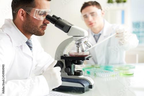 Fotografia  Clinical study