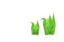 Green Paper Birds
