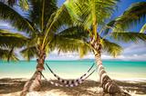 Auszeit: Hängematte unter Palmen