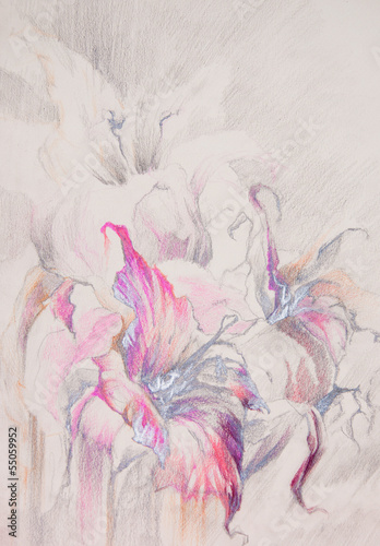fioletowe-kwiaty-kolorowy-szkic