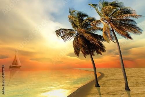 wyspa-palmowa