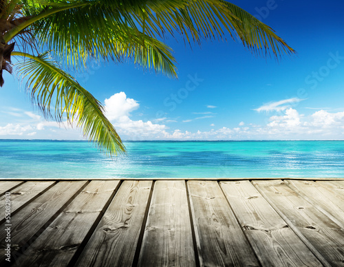 Wall mural - Caribbean sea and perfect sky