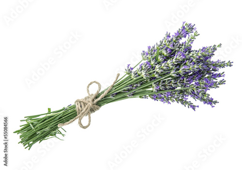 Photo  lavender flowers isolated on white background