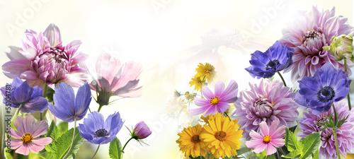 Fototapeta kwiaty obraz