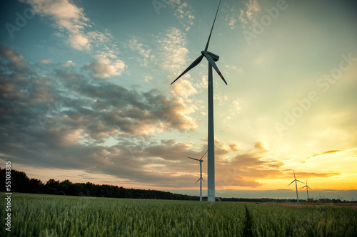 Fotografia  wind turbines at sunset