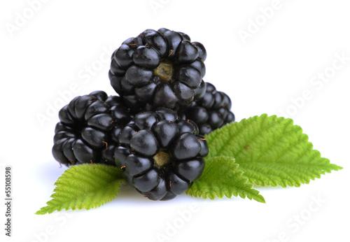 Obraz na plátne dewberries (blackberries) and green leaves