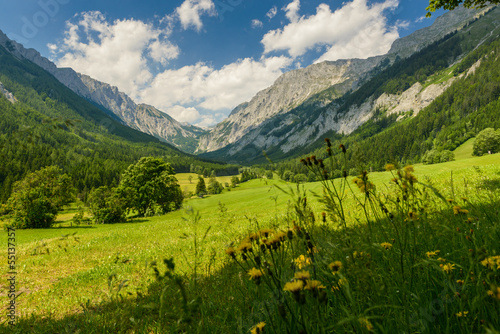 Canvas Prints Landscapes fields and mountains-Valley Seewiesen,Styria,Austria.