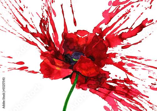 Canvas Prints Paintings poppy flower