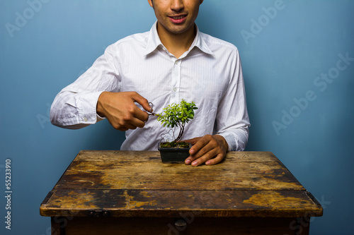 Photo Stands Bonsai Happy man pruning his bonsai tree