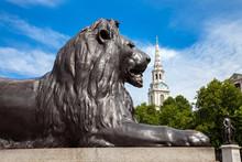 Lion On Trafalgar Square