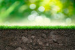 Soil and Green Grass