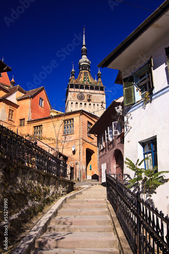 Fotografie, Obraz  Sighisoara Clock Tower view from the city stairs