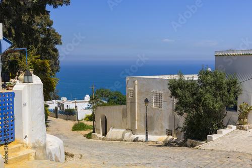 Staande foto Tunesië Old arabic town in Tunisia - Sidi Bu Said
