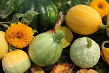 Big Assortment Of Decorative Pumpkins
