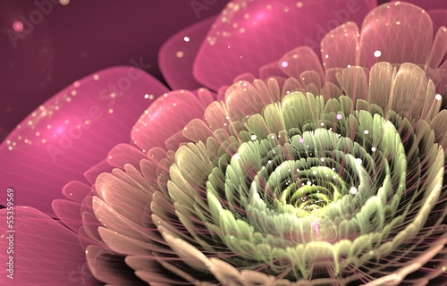 pink and green fractal flower