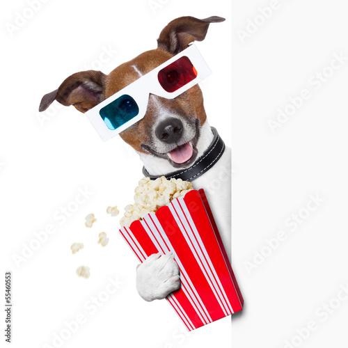 Fototapety, obrazy: cinema dog