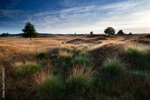 Foto op Canvas Australië morning sunlight through hills