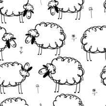 Funny Sheeps On Meadow, Seamle...