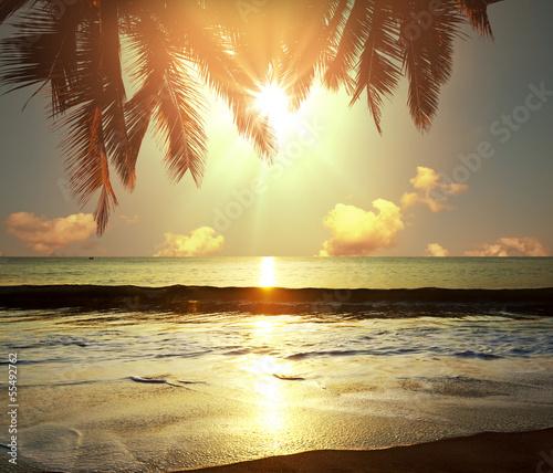 tropikalna-plaza-slonce-schowane-pod-palma