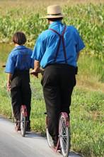 Boys On Scooters II