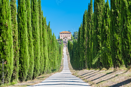 Deurstickers Toscane Tuscany countryside, typical villa with alley and cypresses