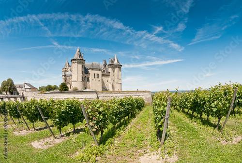 obraz PCV Chateau de Saumur, Loire Valley, France